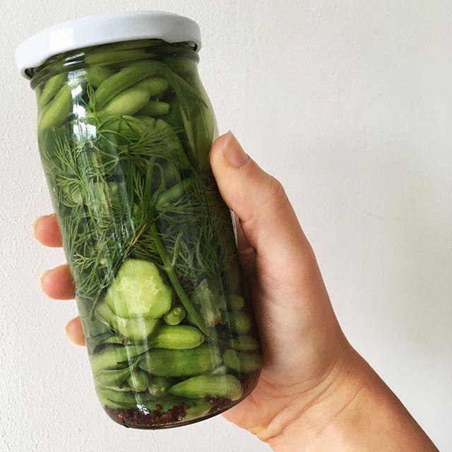 Radish-pod pickle. Curious how this will turn out. #radishpods #gherkins #dill #garlic #mustardseeds #pickling #sweetandsour #homegrown #homemade #allotment #urbangarden #radijszaad #augurken #inmaken #zoetzuur #dille #mosterdzaad #knoflook #moestuin