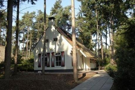 Landgoed 't Wildryck  De vrijstaande 6-pers. (NL-1005 NL-1006 en NL-4505) en 4-pers. (NL-1002 en NL-1003) landhuizen zijn in 1999 afgebouwd en liggen op ruime kavels verspreid over het beboste terrein. Ze bieden de sfeer van toen en het comfort van nu. Vele huizen zijn voorzien van een rieten dak. De inrichting is sfeervol en compleet deels met gezellige houtkachel of potkachel. Sommige huizen hebben een bedstee (met name geschikt voor kinderen). De huizen zijn in particulier bezit dus de…
