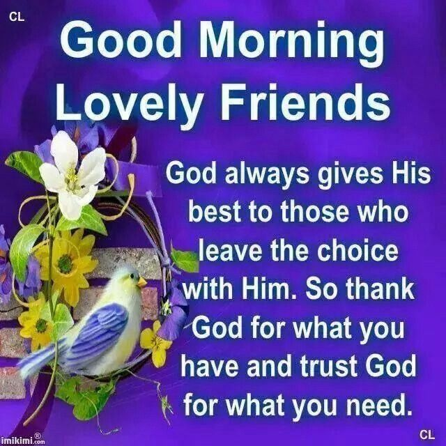 Good Morning My Beautiful Friend Quotes: Best 25+ Good Morning Friends Quotes Ideas On Pinterest