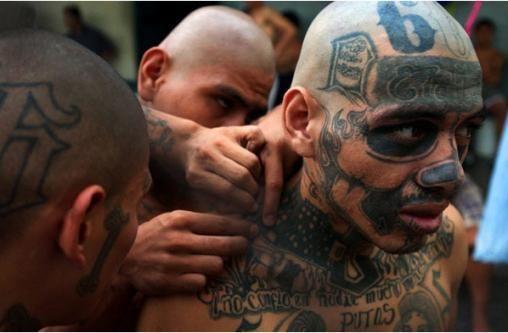 Gente tranquilla, Gang tattoo