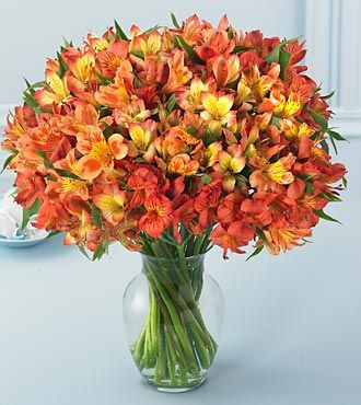 Flores Para Todos os Tipos de Festas | Sua Casa Sua Festa
