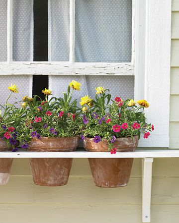This makes for an easy to make window box, one board with holes cut for the pots and a couple of brackets! -Flower pots on a window. Cute.