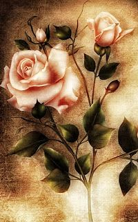 ANTIQUE ROSES ~  Perfect for decoupage projects.