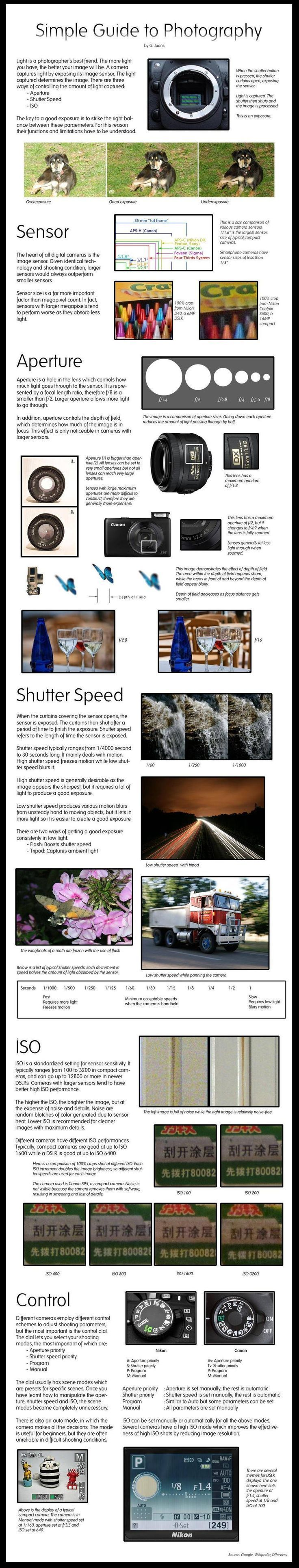 Photography Tips   The Real Simple Guide to Photography   Learn basics on how to take good photos