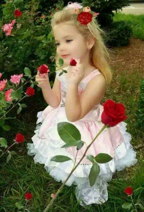 Bom dia! ! ! Um lindo dia!♡ Feliz sexta feira! ☆