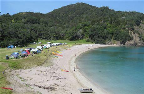 Waikahoa Bay conservation campsite: Mimiwhangata Coastal Park, Northland region