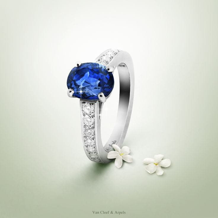 Van Cleef & Arpels Pushkar solitaire, symbol of loyalty and faithfulness - platinum, diamonds, one cushion-cut sapphire central stone of 2,17 carats -  #VCAbridal #EnchantingLoveStories Learn more about sapphires by Van Cleef & Arpels.