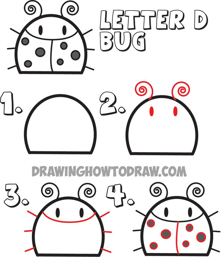 how to draw easy cartoon animals