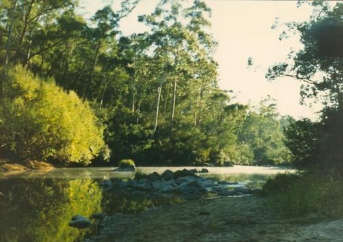 Mitta Mitta River Victoria by suesbent, via Flickr