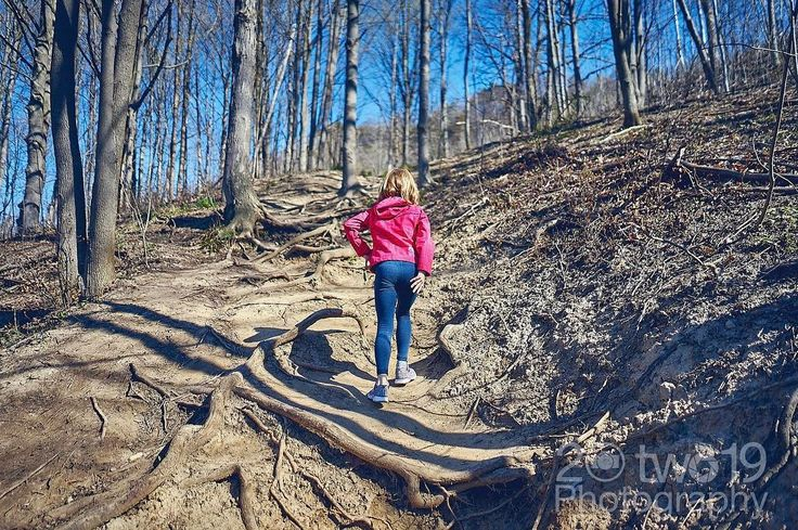 Hiking adventure with my daughter. Enroute to Dundas Peak and Tews Falls . . . . . . @focalmark #naturelovers #awesome_earthpix #liveauthentic #thecreative #livefolk #mountainlove #artofvisuals #instamountain #nature_perfection #focalmarked #naturephoto #main_vision #artofvisuals #watchthisinstagood #landscape_captures #torontolife #torontoigers #wethenorth #downtowntoronto #igerstoronto #sonyimages #sonyalpha #sonyalphasclub #sonyphotogallery #sonyphotography