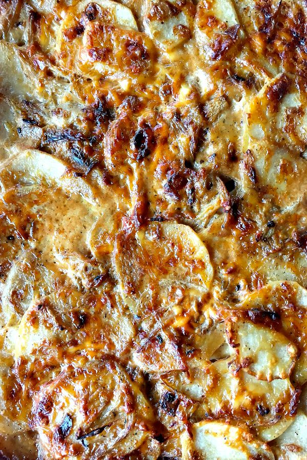 Ina Garten's Potato-Fennel Gratin