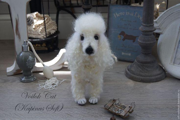 Купить Пуделёк Люцифер - белый, пудель, белый пудель, серый пудель, Портретная копия