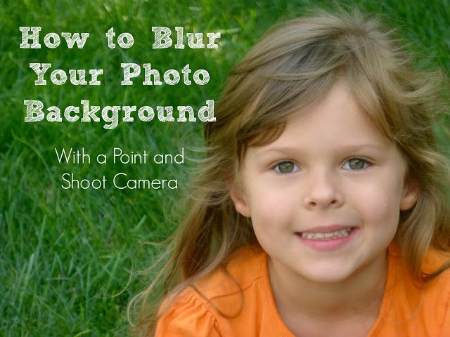 Domestic Bliss Squared: How to Blur Your Photo Background with a Point and Shoot Camera
