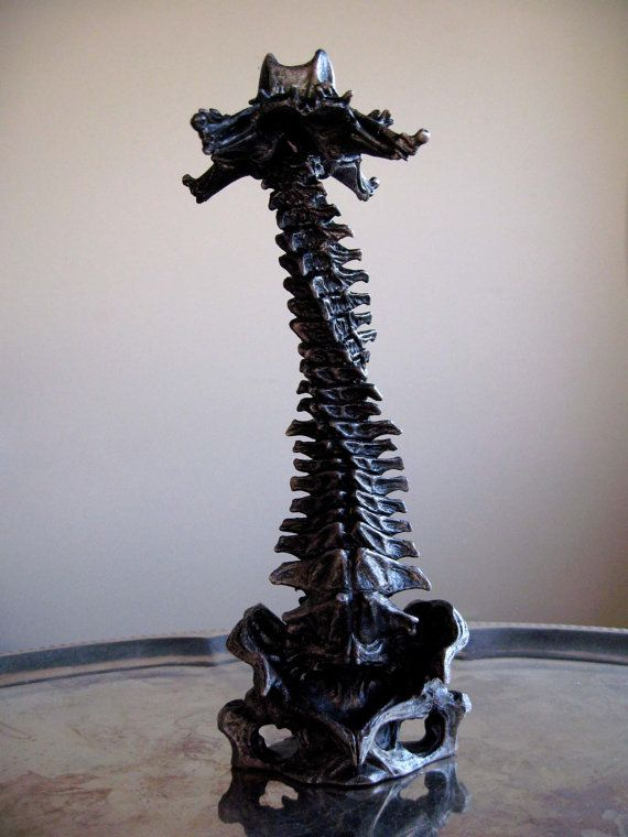 Double Helix Spine Candle Holder Home Inspo Pinterest