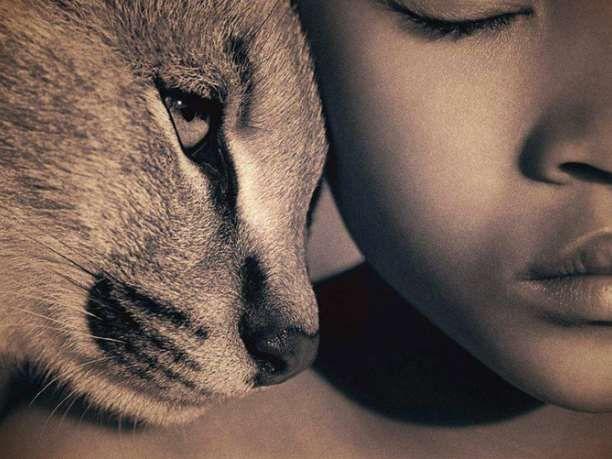 Η Νέα Ζηλανδία πέρασε νομοσχέδιο με το οποίο αναγνωρίζει πως όλα τα ζώα έχουν αισθήσεις και συναισθήματα.