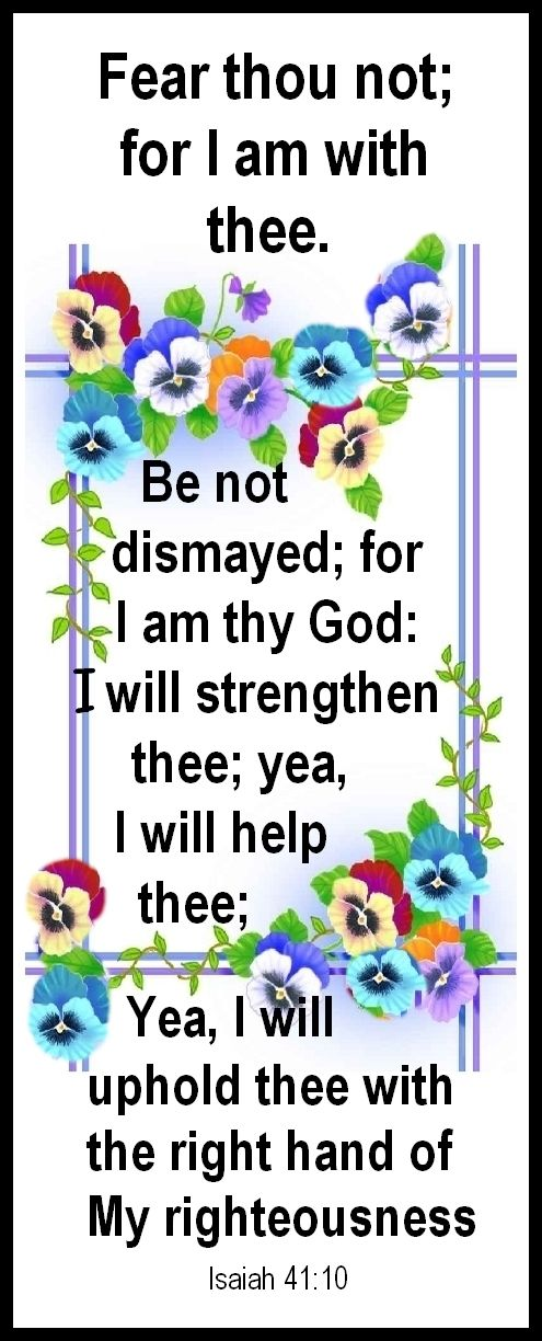 #pansies #flowers #bible  ..  FEAR THOU NOT; FOR I AM WITH THEE....   http://theSupergranny.net