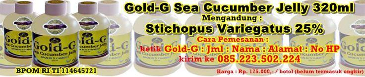 obat herbal keloid dengan Jelly Gamat Gold-G Sea Cucumber.