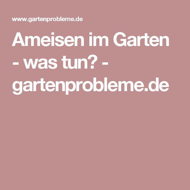 Более 20 лучших идей на тему «Ameisen im garten» на Pinterest - ameisen in der küche was tun
