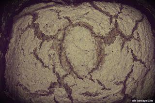 Pão de Mistura sem glúten e sem lactose