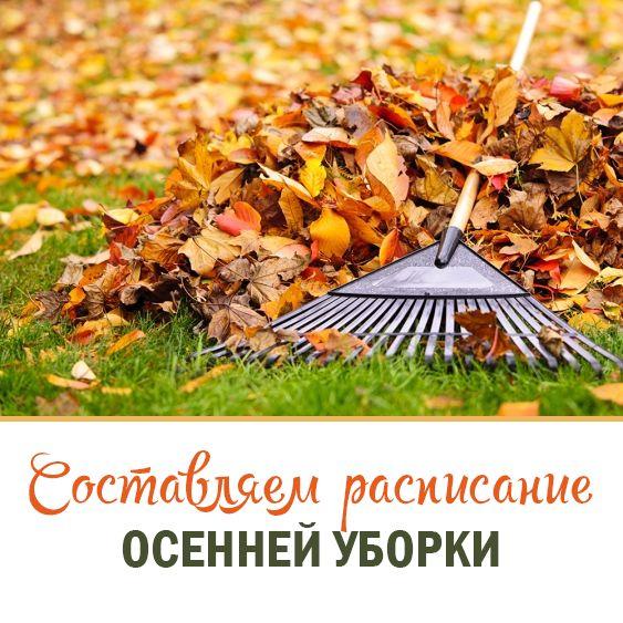 Шаблоны для составления расписания Осенней уборки дома