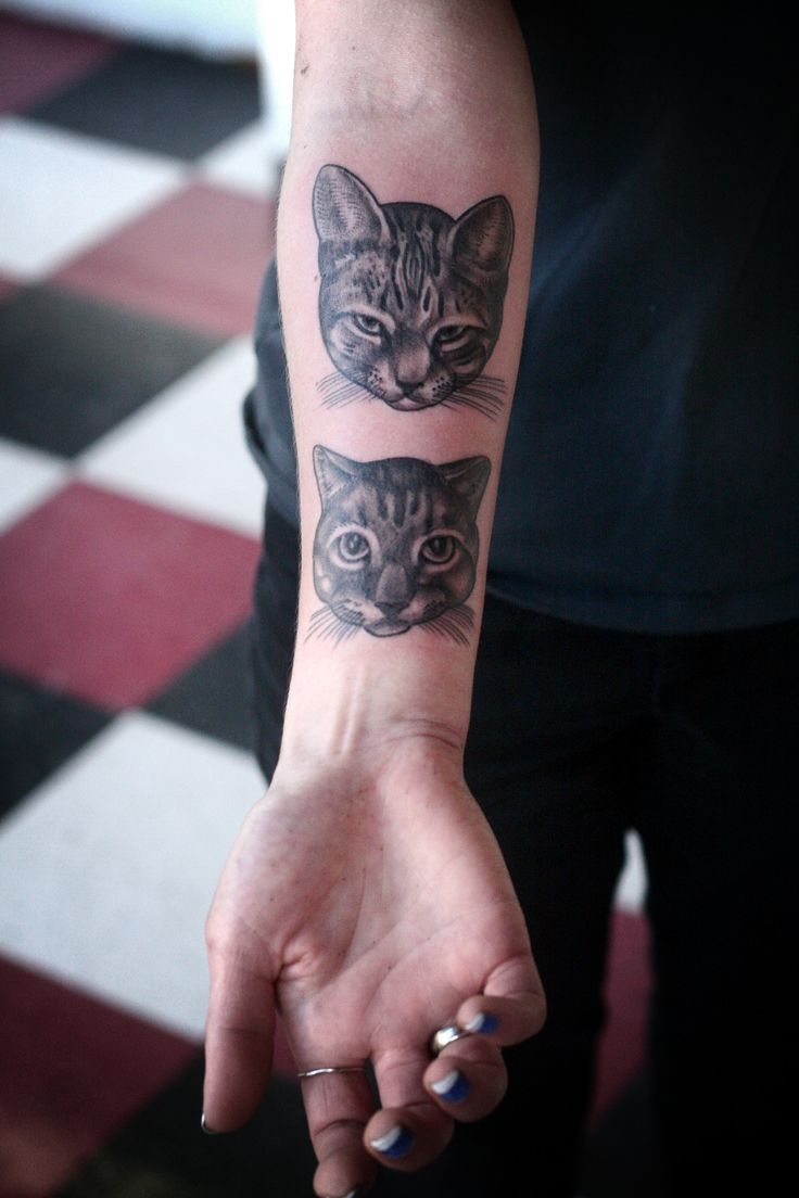 fuckyeahtattoos:    cat tattoos by justin dion, at anatomy tattoo in portland, oregon.