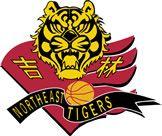 Jilin GBT Northeast Tigers, Jilin, China -Chinese Basketball Association- Division: Northern #NortheastTigers #Jilin #CBA (L20539)
