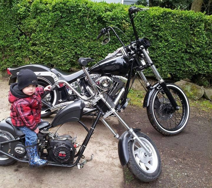 Born to be wild. One day!