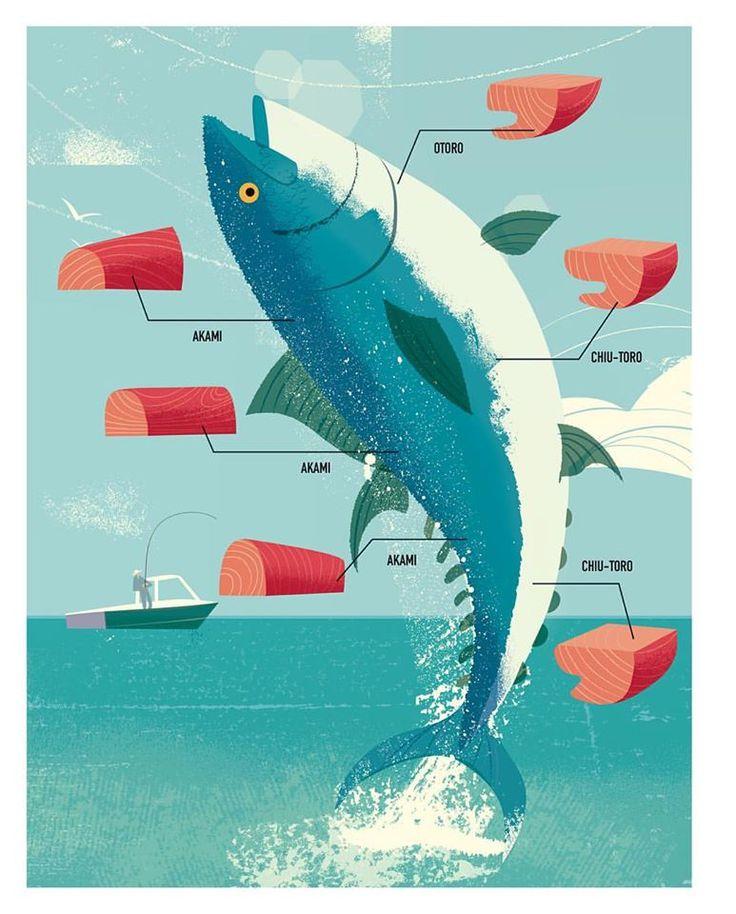 tuna illustration studiogarcia