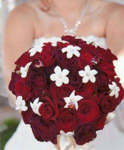 Pretty Stephanotis Wedding Flowers   The Wedding Specialists