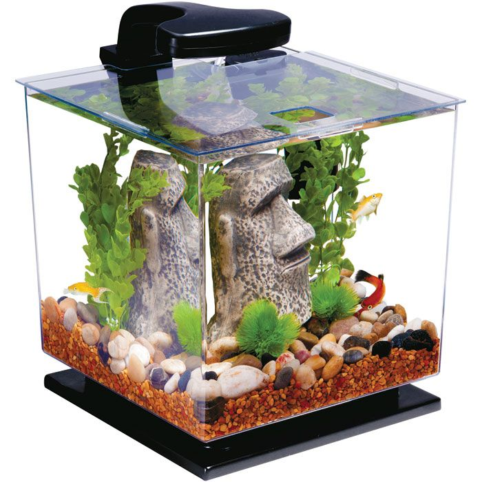 30 gallon aquarium stand plans woodworking projects plans for Betta fish for sale at walmart