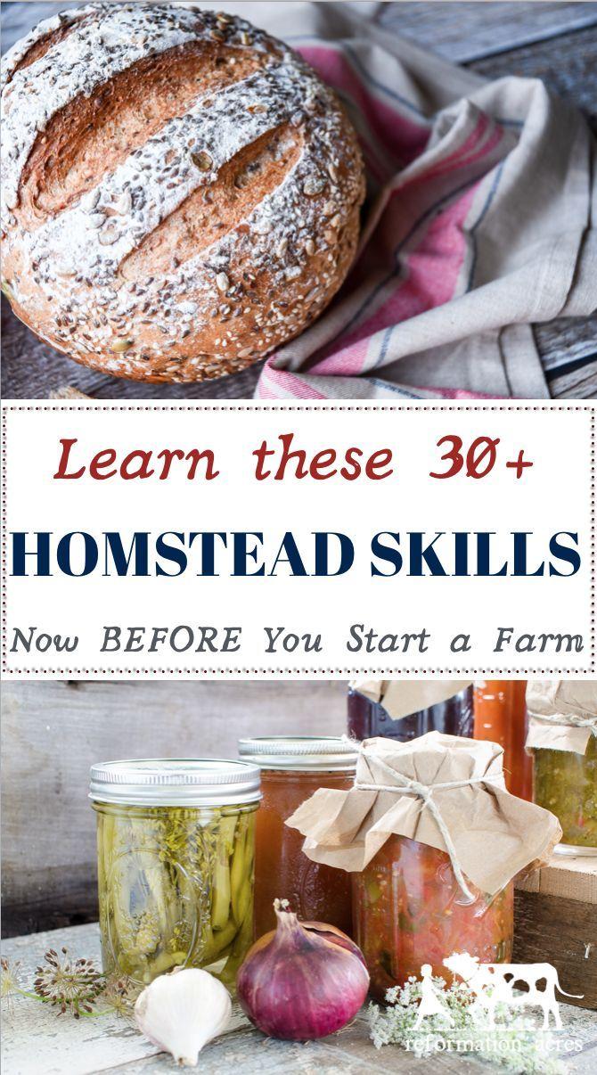 30+ Homestead skills to learn NOW. Homestead dreamin