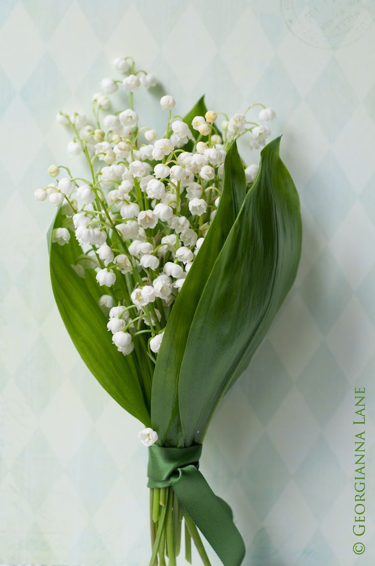 more lily of the valley from one of those blogs that make you just want to pin the whole darn blog! LOL