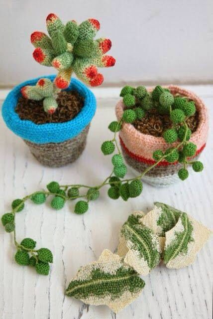 Crochet succulents.....great idea for my window-less office where the real ones keep dying