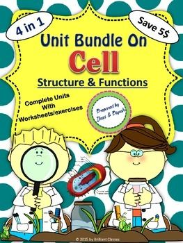Discounted Science Bundle!!!!!! This bundle is for students of grades 4 to 10 contains FOUR Cell based biology  units as a part of CELL UNIT(Cell-Types, structure and function, Level of Cell Organization, Structure of cell membrane, Permeability and membrane transport, Cell Scavenger Hunt)for a discounted price!