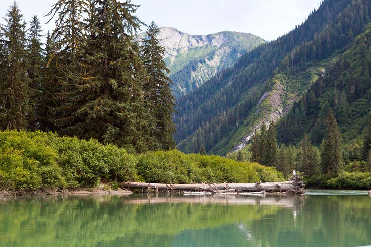Exchamsiks River Near Terrace, BC