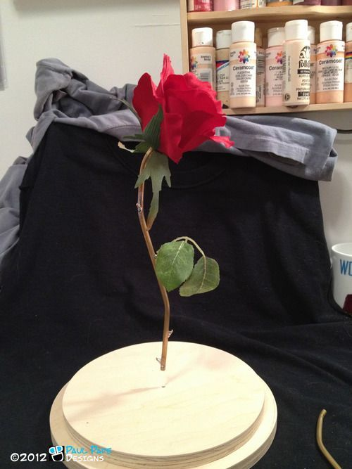 Creating The Beauty And The Beast Floating Rose Crafts Pinterest