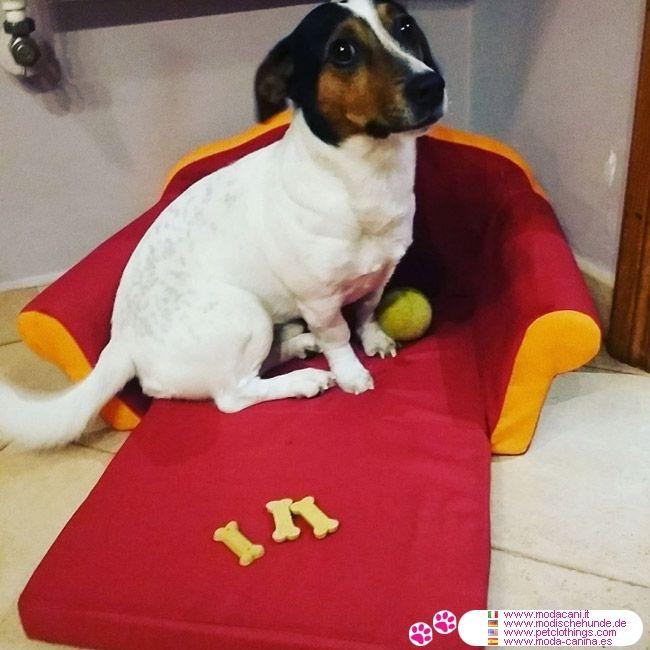 Cuccia a Divanetto della Roma per Cani Piccoli #ModaCani #JackRussell - Cuccia a divanetto per cani e per gatti, prodotto ufficiale AS ROMA: ha un materassino che si allunga, trasformandola da divano a lettino; in 3 misure