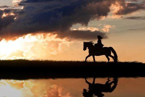Aprenda a andar a cavalo com quem sabe. Na Coudelaria Quinta Oliveira 2 aulas de equitação individuais de iniciação ou aperfeiçoamento por apenas 19,90€. . Na Escola de Equitação Miguel Alves, uma aula de iniciação à equitação, por apenas 20€ em vez de 40€. - Descontos Lifecooler