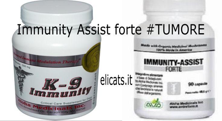 k-9 Immunity Vs Immunity Assist forte. Dopo aver scritto un articolo sulla