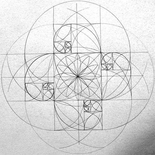 спираль фибоначчи в рисовании - Поиск в Google