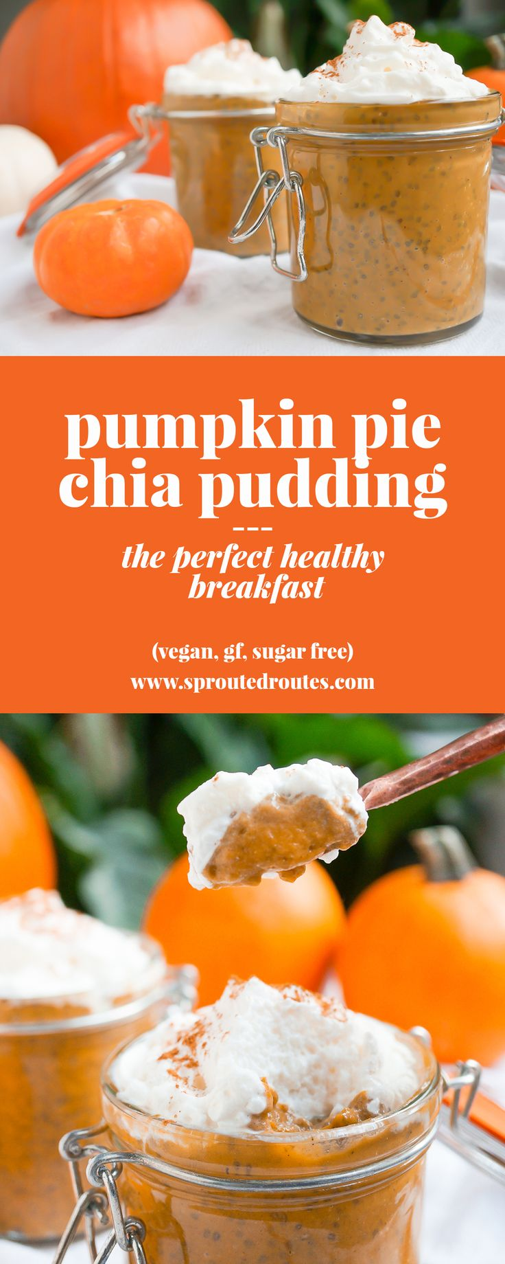 This Pumpkin Pie Chia Pudding recipe is a healthy way to celebrate fall flavors. Packed with nutrients and flavor, it tastes just like pumpkin pie filling!