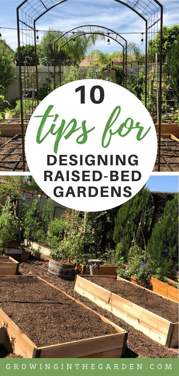 Raised Bed Garden Design Tips With Images Vegetable Garden