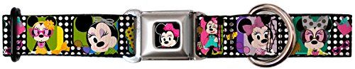 Walt Disney Movies TV Shows Minnie the Star Seatbelt Fun Pet Dog Cat Collar *** Be sure to check out this awesome product.