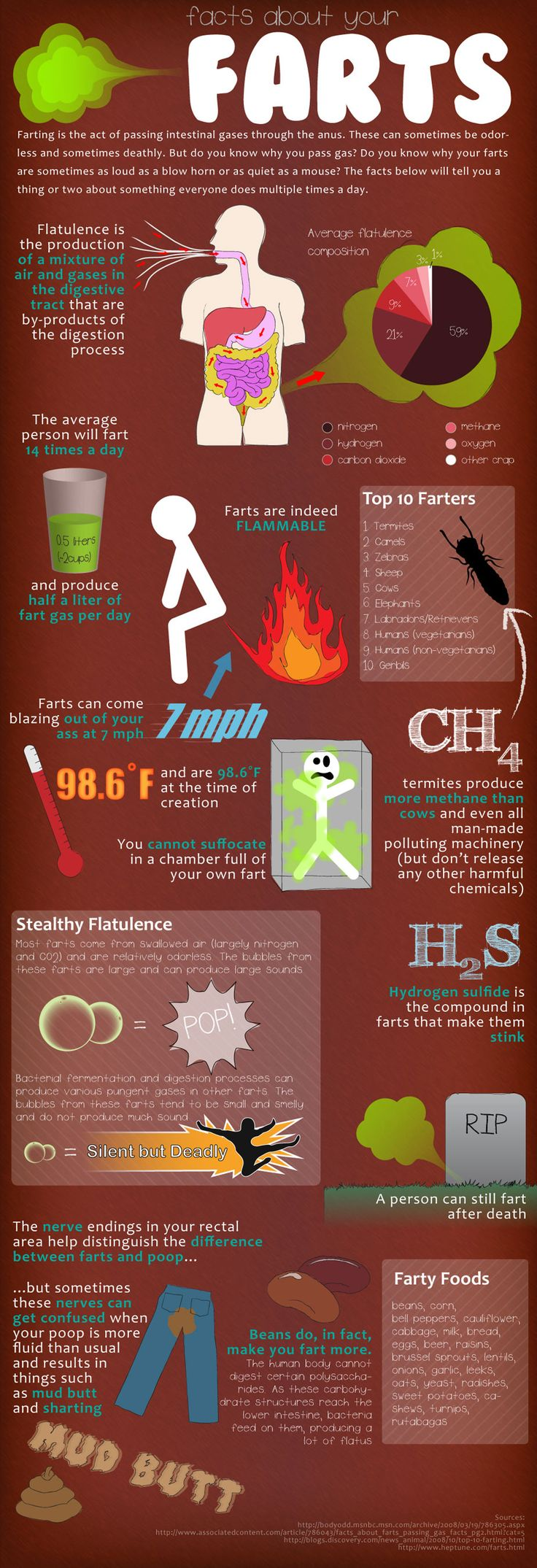 Your Farts: The Facts   Just because you know farting is a topic of discussion when you're with a group of friends.