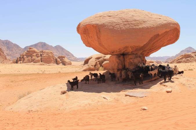 Mushroom Rock, Wadi Rum, Jordan