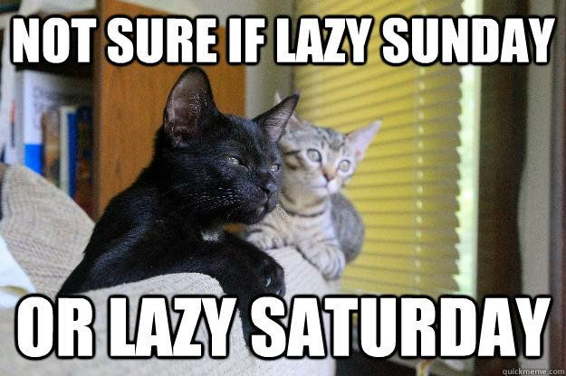Lazy Sunday Memes - A funny lazy Sunday meme from Slapwank, home to the best funny memes collection online!