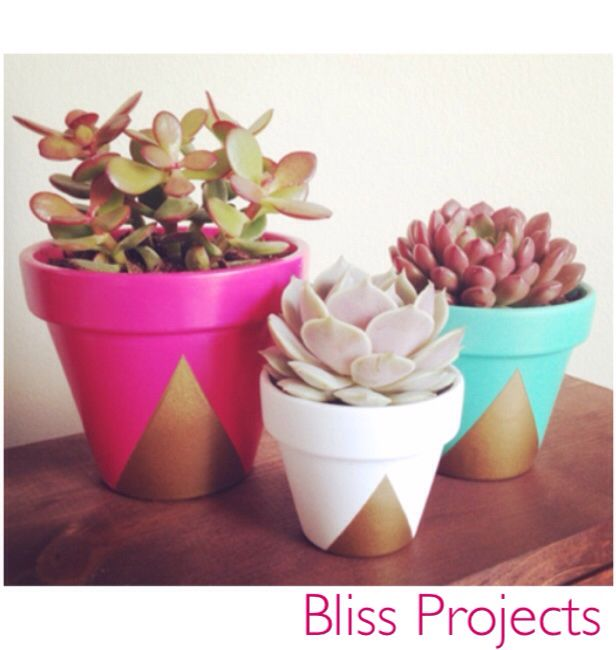 Geometric pots. Gold spray paint combined with an choice of bright colour of your choice can finish a room off with life and colour. #blissprojects #terracotta #geometric #lifeandcolour #herbs #potplants #kitchendecor #gardening #diy #gifts #giftsforkids #flowers #flowerdecor #personalise #spring #colour