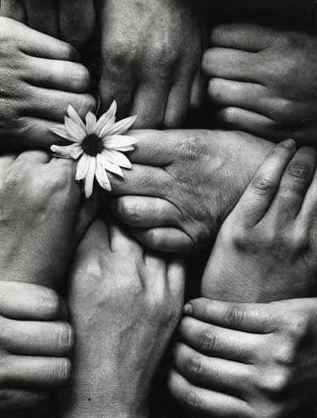 Daisy hands