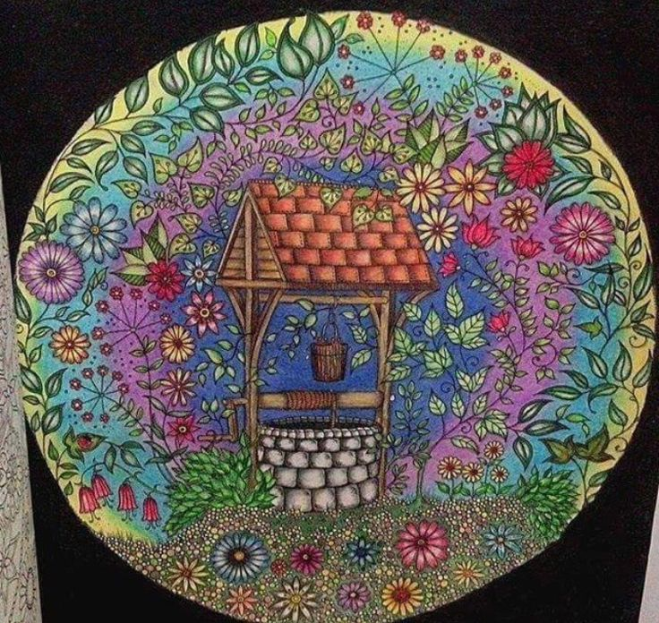 Well Secret Garden Poco Jardim Secreto Johanna Basford Coloring BooksAdult ColoringWishing