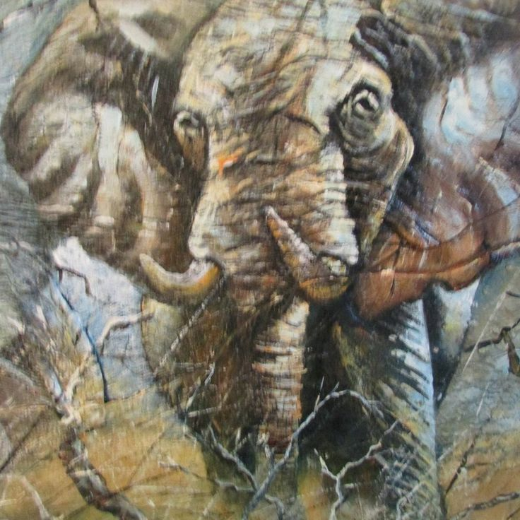 African Wildlife painting on Canvas and Elephant Hide by Harry Erasmus